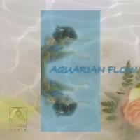 Aquarian Flow - Peace Pool Project [CD] Bollmann, Christian