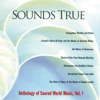 Sounds True Anthology Vol. 1 [CD] V. A. (Sounds True)