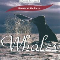 Whales [CD] Sounds of the Earth - David Sun