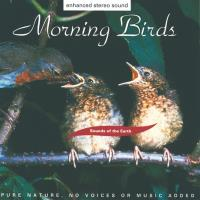 Morning Birds [CD] Sounds of the Earth - David Sun