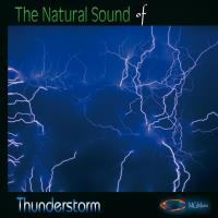 The Nature Sounds of THUNDERSTORM [CD] Goodall, Medwyn