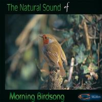 The Nature Sounds of MORNING BIRDS [CD] Goodall, Medwyn