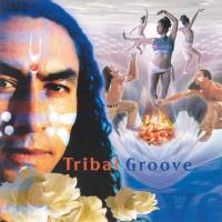 Tribal Groove [CD] V. A. (Music Mosaic Collection)