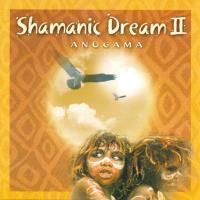 Shamanic Dream Vol. 2 [CD] Anugama