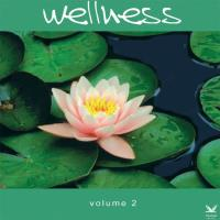 Wellness Vol. 2 [CD] V. A. (Wellness Music)