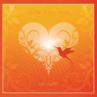 Nectar of the Name [CD] Sat Purkh