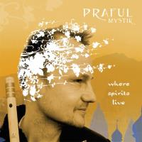 Where Spirits Live [CD] Praful Mystik