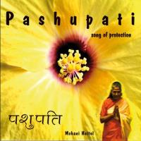 Pashupati - Song of Protection [CD] Heitel, Mohani