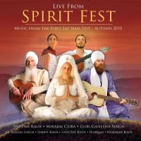 Live from Spirit Fest [CD] V. A. (Spirit Voyage)