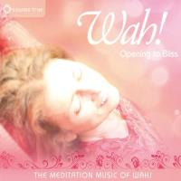 Opening to Bliss - The Meditation Music of Wah! (CD) Wah!