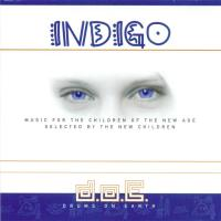 Indigo [CD] Drums on Earth