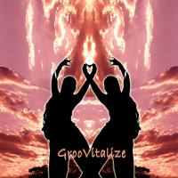 GrooVitalize (CD) V. A. (Music Mosaic Collection)