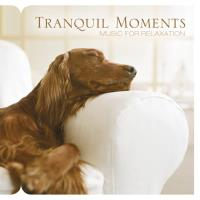 Tranquil Moments [CD] Somerset Series