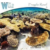 Fragile Reef [CD] Lovelock, Simon
