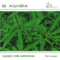 Music for Growing [CD] B. Ashra