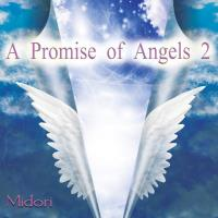A Promise of Angels Vol. 2 [CD] Midori