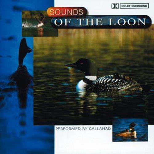 Dolby Surround [CD] Gallahad
