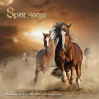 Spirit Horse [CD] V .A. (MG Music)
