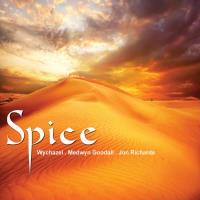 Spice [CD] V. A. (MG Music)