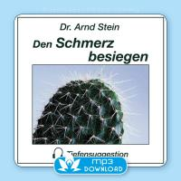 Den Schmerz besiegen [mp3 Download] Stein, Arnd