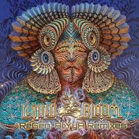 ReGen AtYyA Remixes [CD] Liquid Bloom