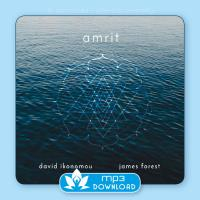Amrit [mp3 Download] Ikonomou, David & Forest, James