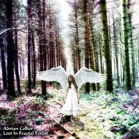 Lost in Fractal Forest [CD] Collier, Adrian