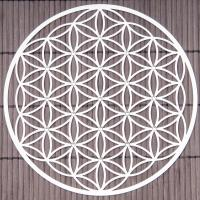 Flower of Life 18 cm Stainless steel wall decoration with crystals